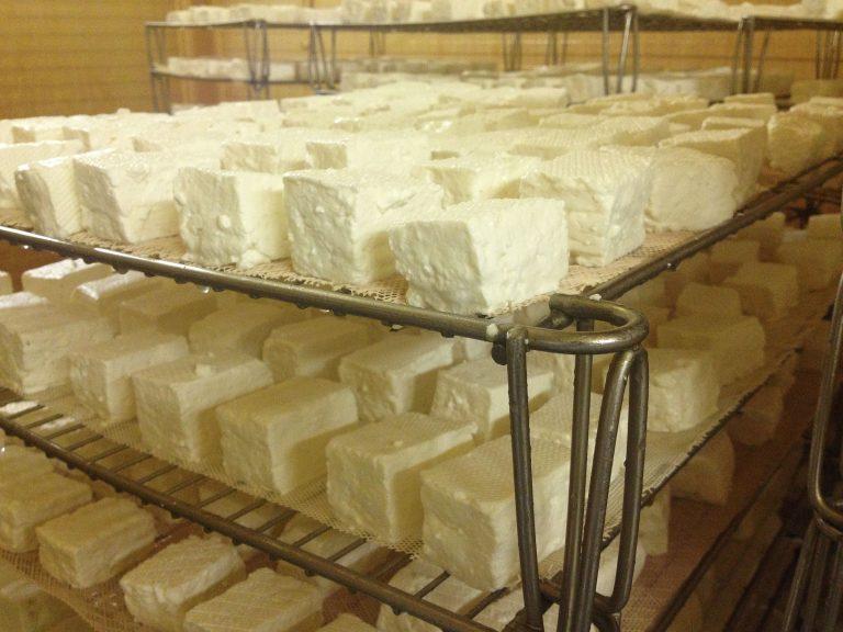 a sajt szaga a szájból